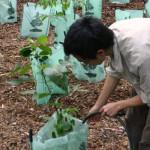 Water-Tube-Large-Farming-2-NG
